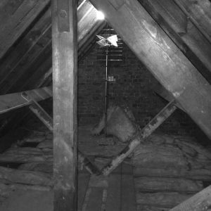 ANBM working on attic insulation for a house